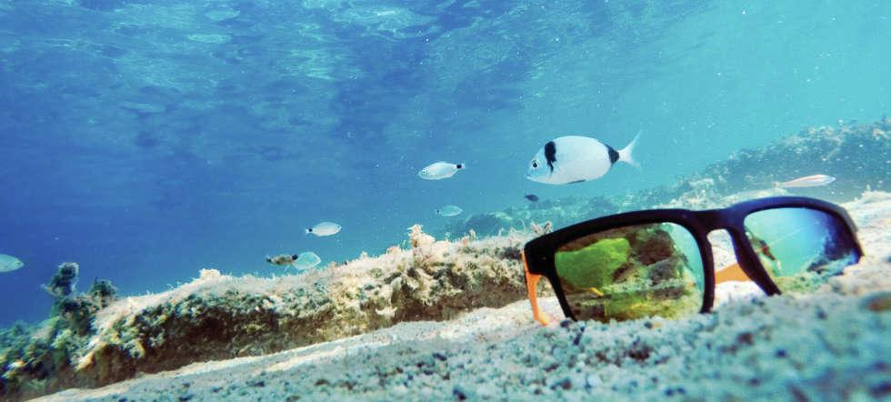 Umweltgifte im Meeresboden