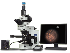 Efficient Studies without Fluorescence Labelling